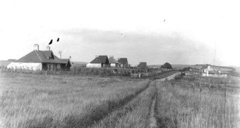 Kingston Ridge 1925