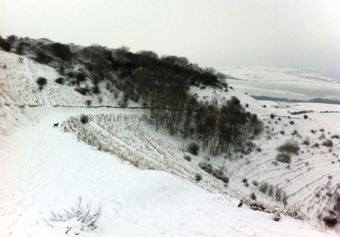 The South Downs near Kingston in the snow